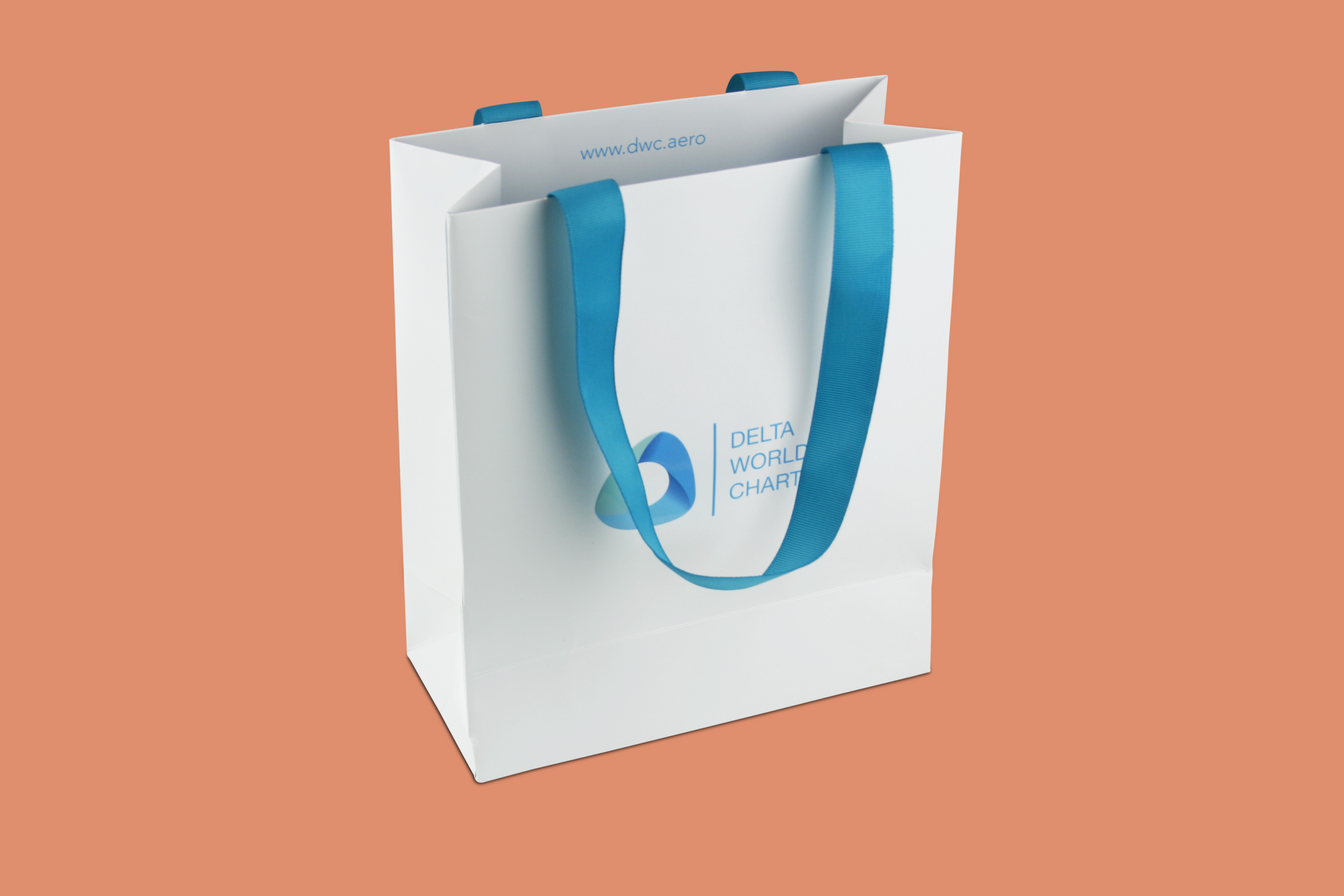 Special Color Medium Bag With Ribbon